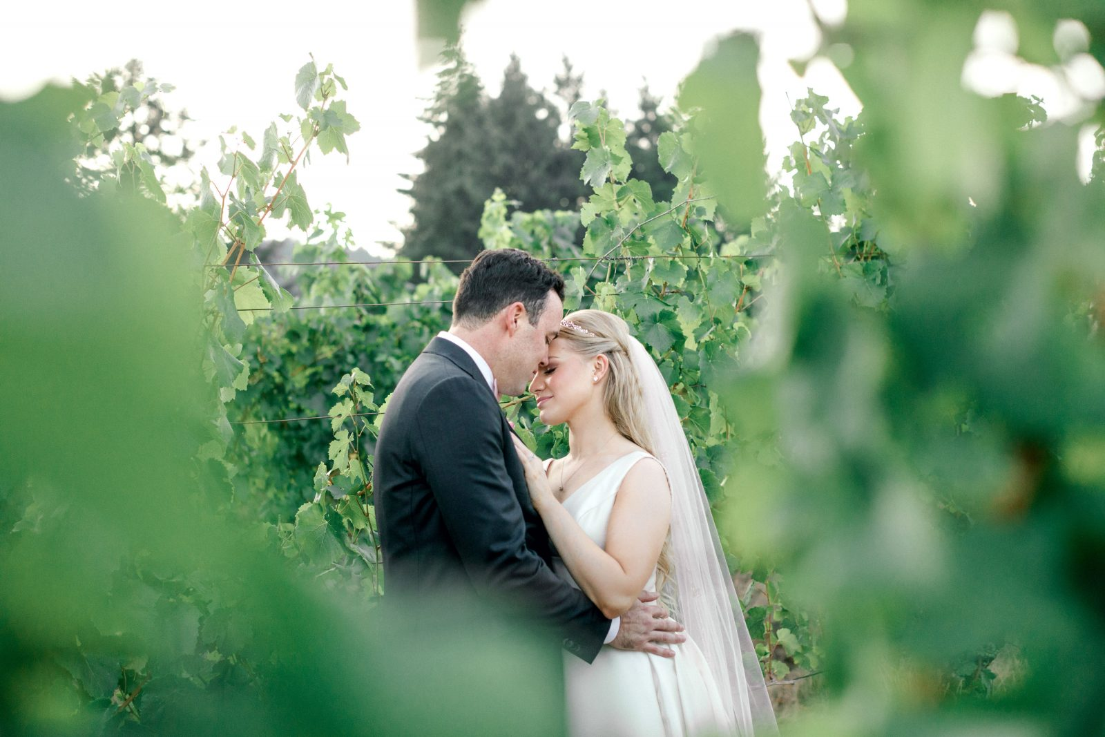 18-8-John-Lauren-Beacon-Hill-Vineyard-Winery-Wedding-Portland-Oregon-Destination-Photographer-Zeeqk-600 (1)